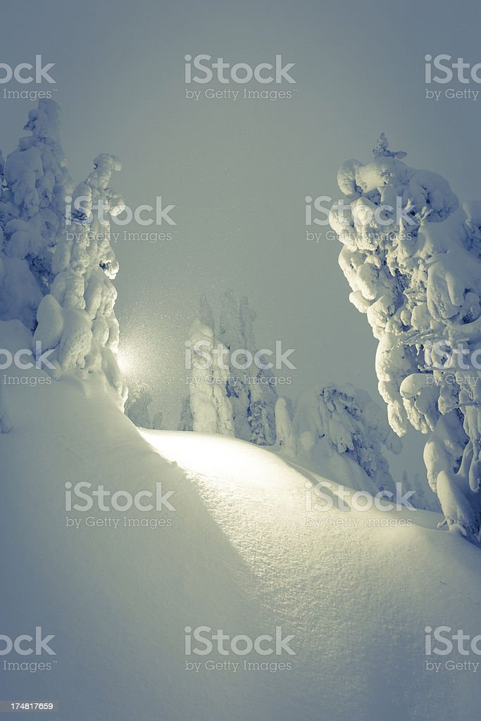 Magical winter ladscape royalty-free stock photo