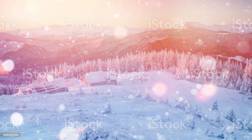 magical winter landscape, background with some soft highlights a stock photo