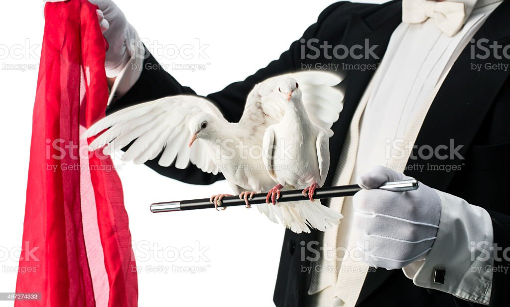 Magician performance with turtles doves stock photo