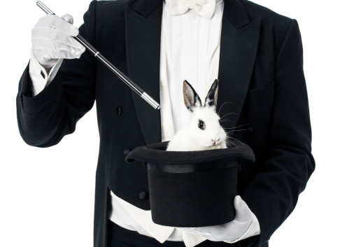 Image result for magician and rabbit
