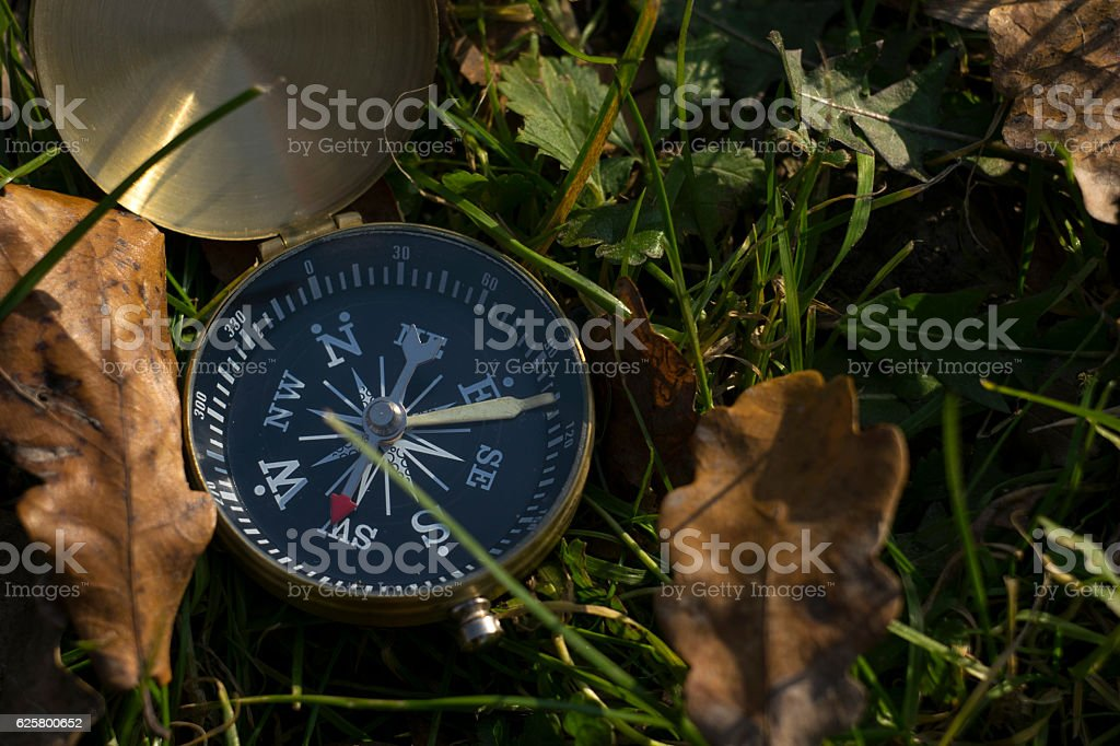 Magnetic compass in grass showing right directions stock photo