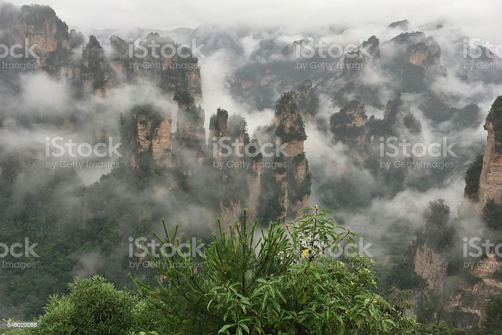 Magnificent and strange peaks in the sea of clouds 02 stock photo