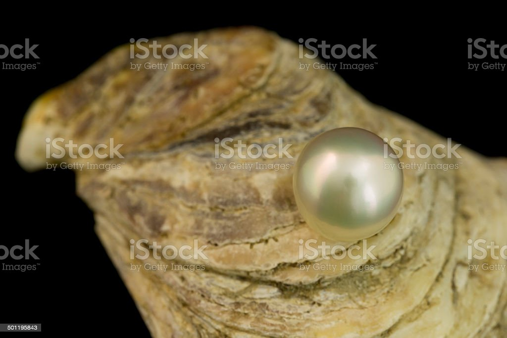 Herrliche weiße Perlen Lizenzfreies stock-foto