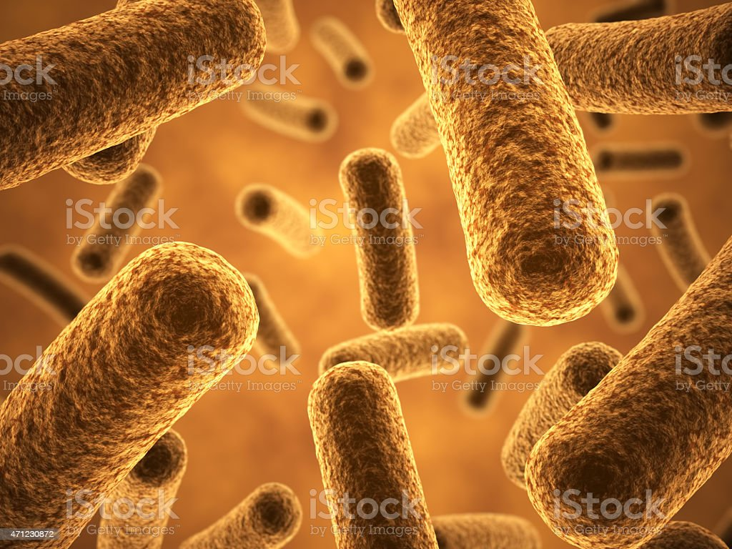 Magnified view of golden bacteria stock photo
