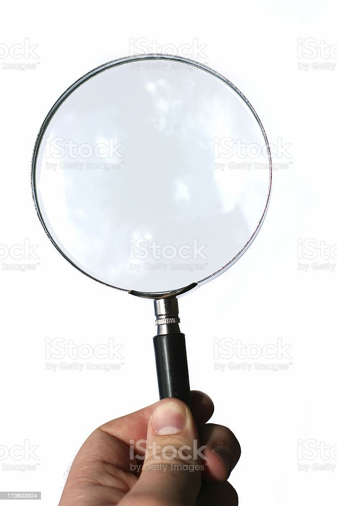 Magnify 02 royalty-free stock photo
