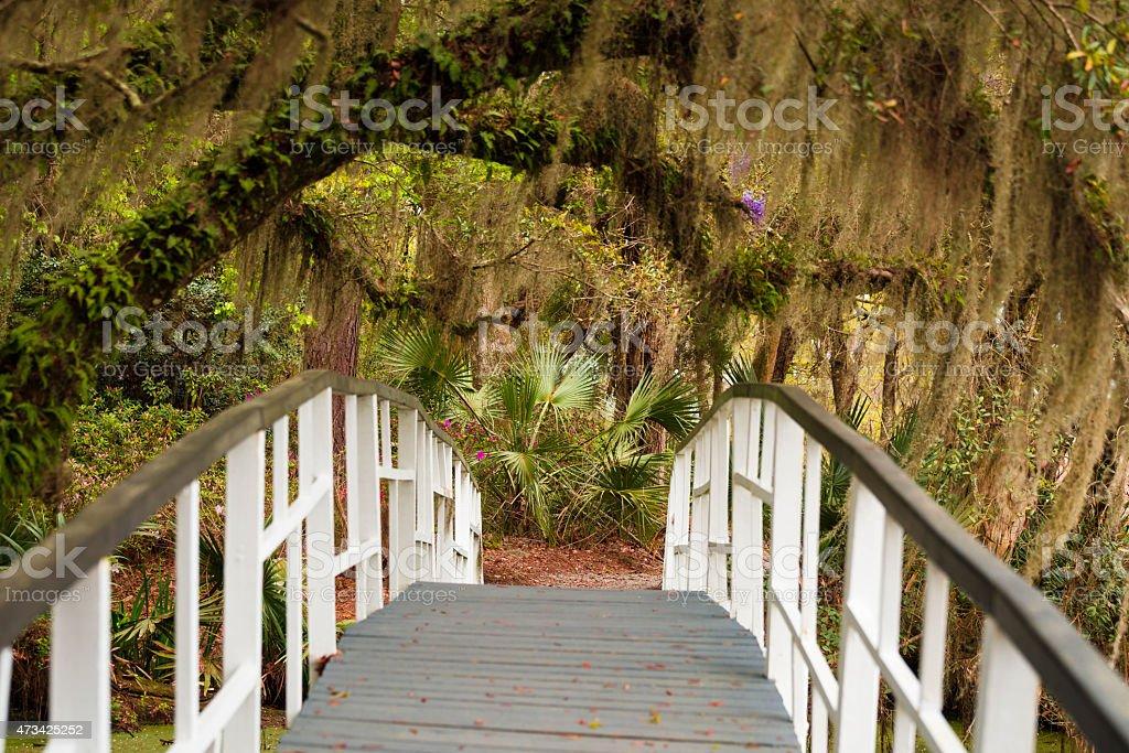 Magnolia Gardens bridge stock photo