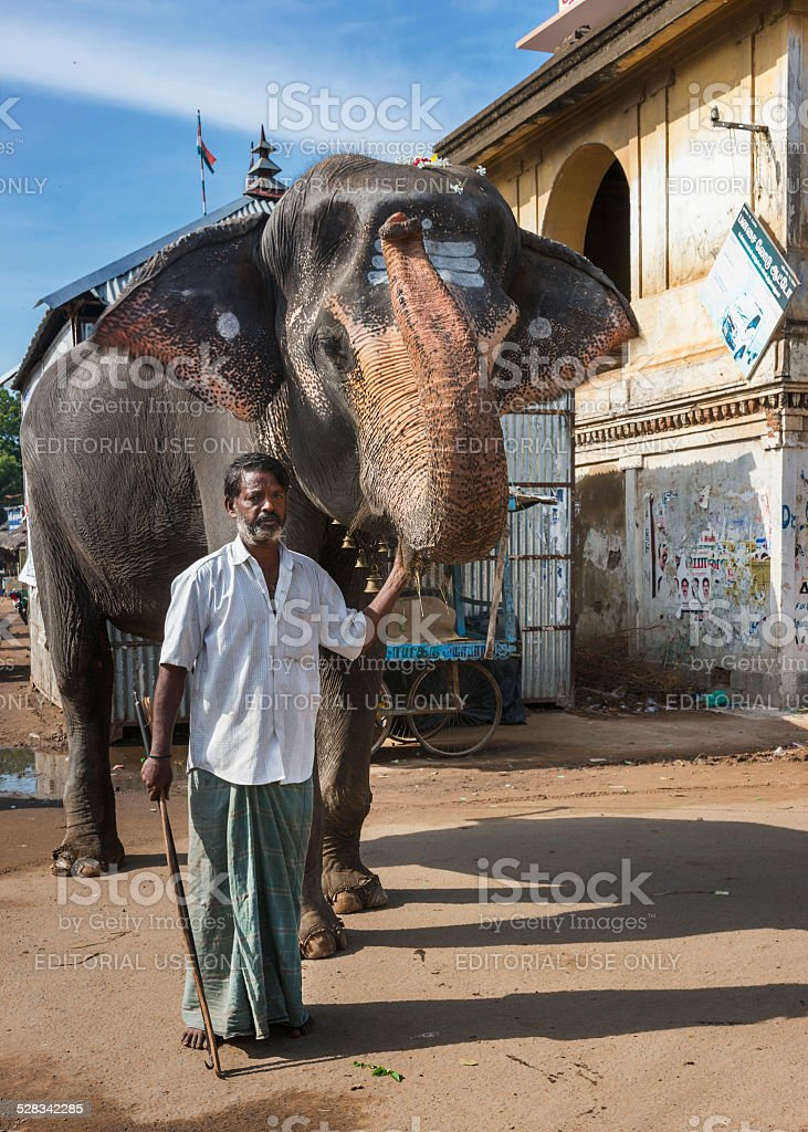 Mahout and his elephant. stock photo