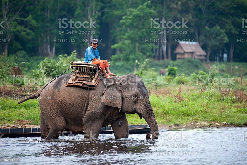 Un cornac équitation Un éléphant dans la rivière peu profonde. photo libre de droits