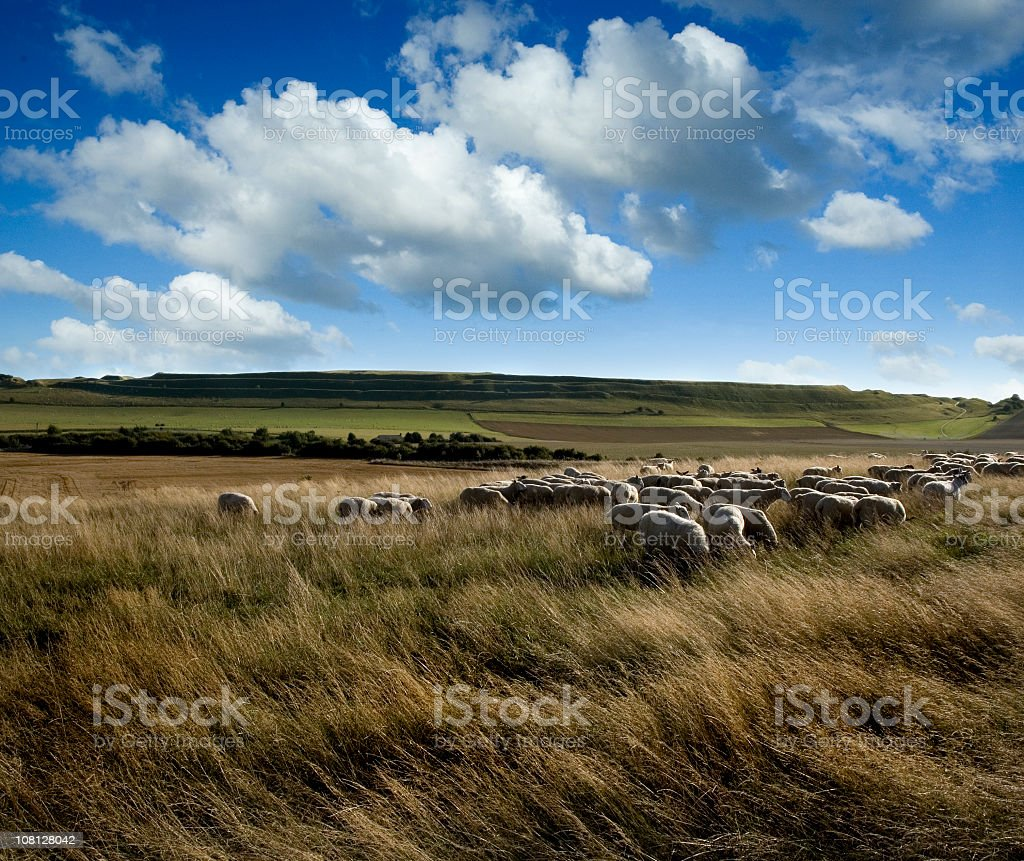 Maiden Castle Hill Fort in English Countryside stock photo