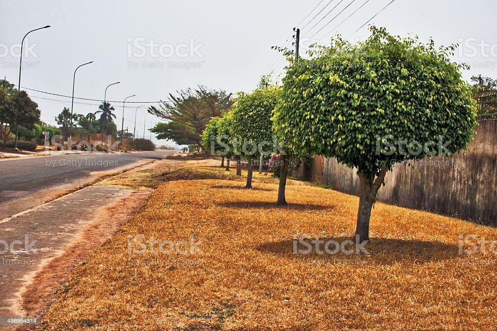 Main street in Korhogo Ivory Coast stock photo