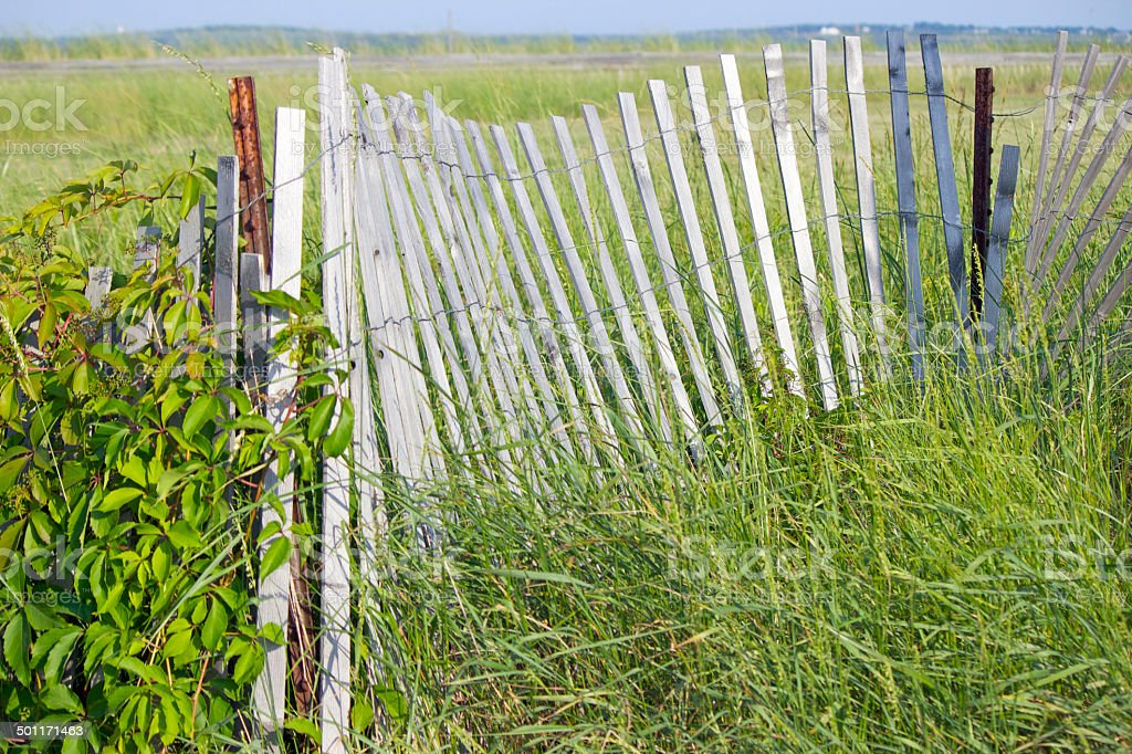 Maine Beach Fence stock photo