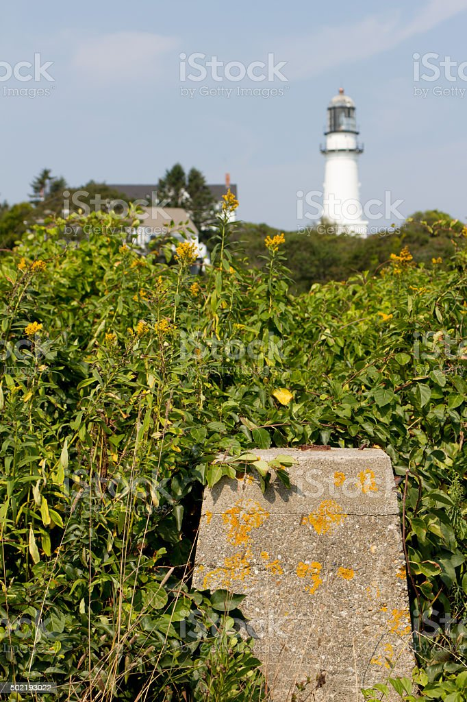 Maine Landscape with Lighthouse in Background royalty-free stock photo