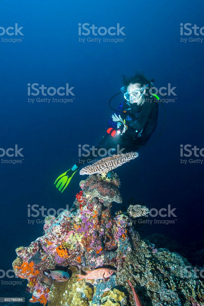 Maine life and diver - Palau, Micronesia stock photo