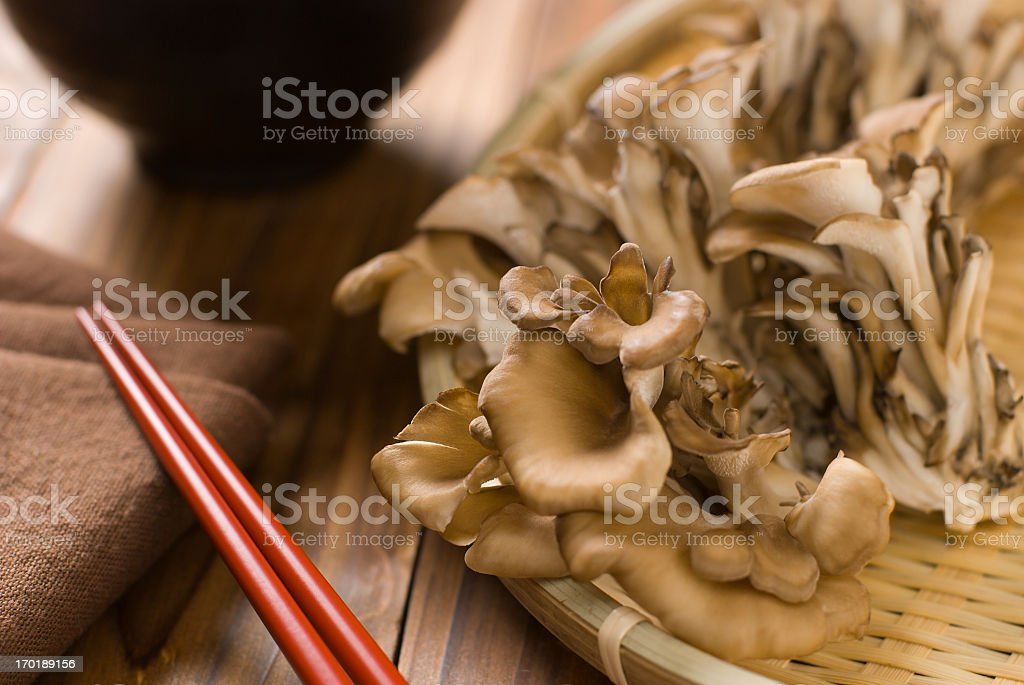 Maitake ( Grifola frondosa ) stock photo