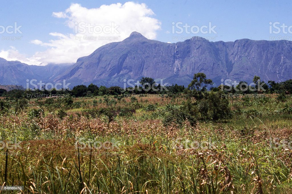 Maize fields in valley below Mulanje Massif a major batholith volcanic landscape feature in southern Malawi Africa stock photo