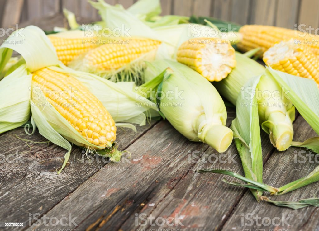 Maize. Fresh Corn on wooden table stock photo