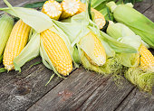 Maize. Fresh Corn on wooden table