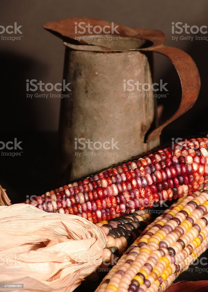 Maize royalty-free stock photo