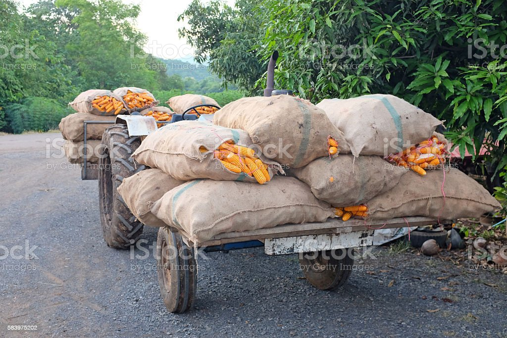 maize tractor vehicle stock photo