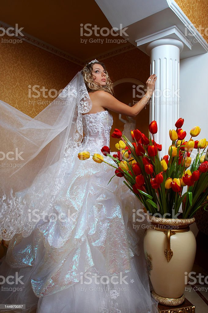 Majestic Bride royalty-free stock photo