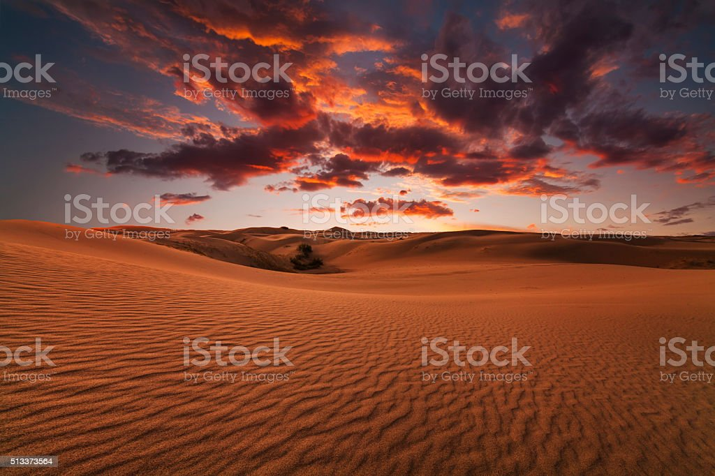 Majestic fiery sunset in the Gobi Desert. Mongolia. stock photo