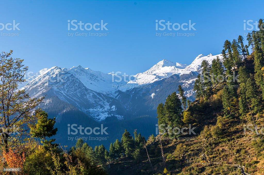 Majestic greenery and snow clad mountain of himalaya stock photo
