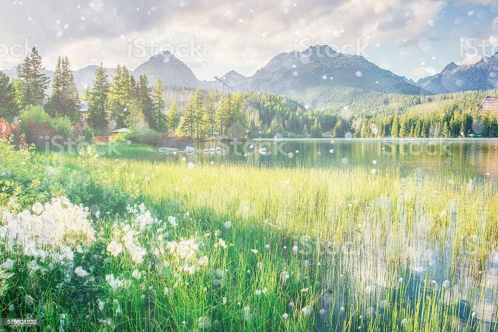 Majestic mountain lake in National Park High Tatra. stock photo
