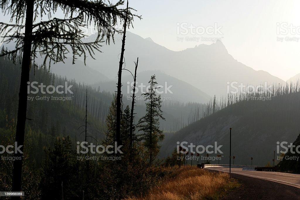 Majestic stock photo