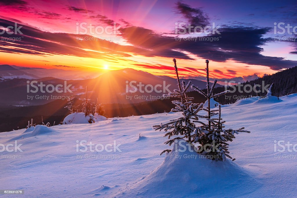 Majestic sunrise in the  winter mountains. stock photo
