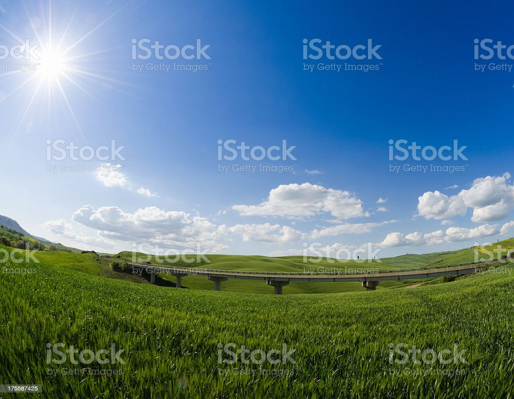 Majestic Tuscany wheat landscape - Green royalty-free stock photo