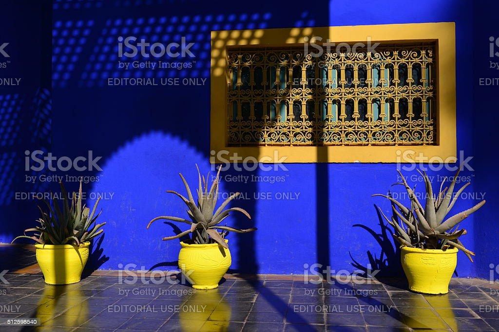 Majorelle gardens, Marrakech, Morocco, Africa. stock photo
