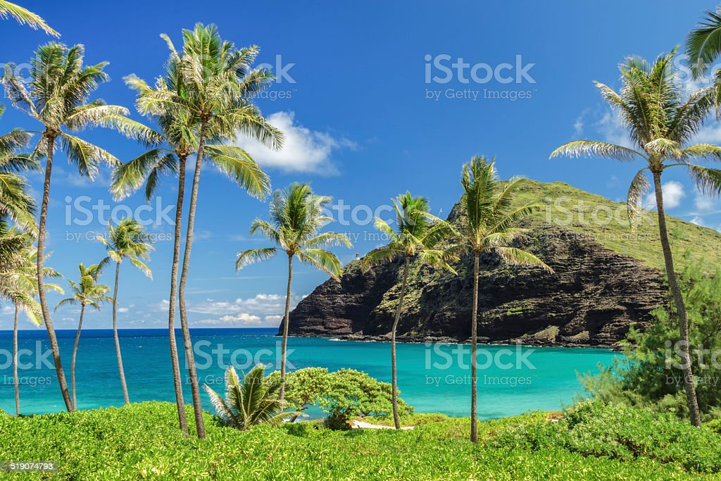 Makapuu Point stock photo