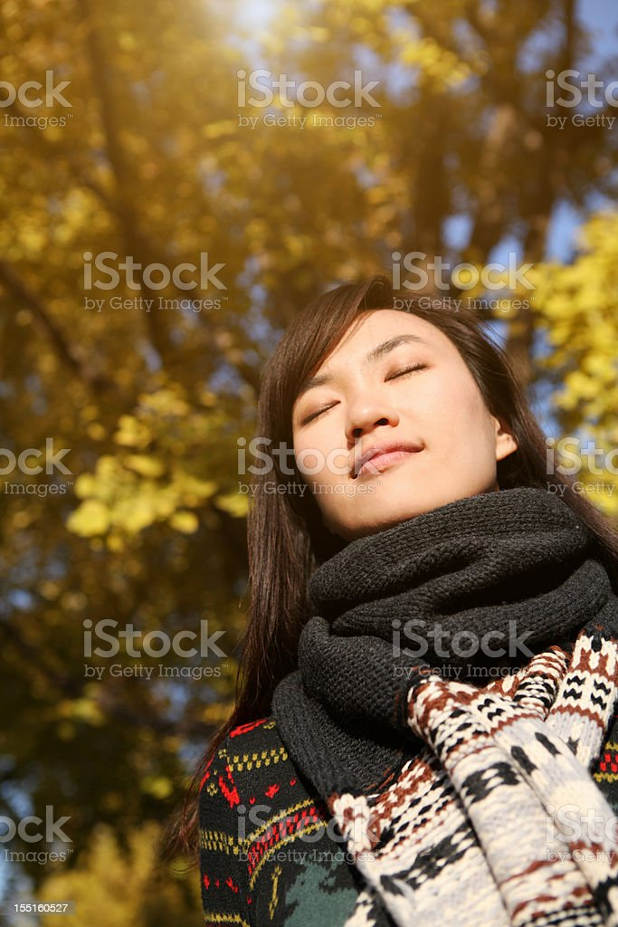 Make A Wish - XXXLarge stock photo