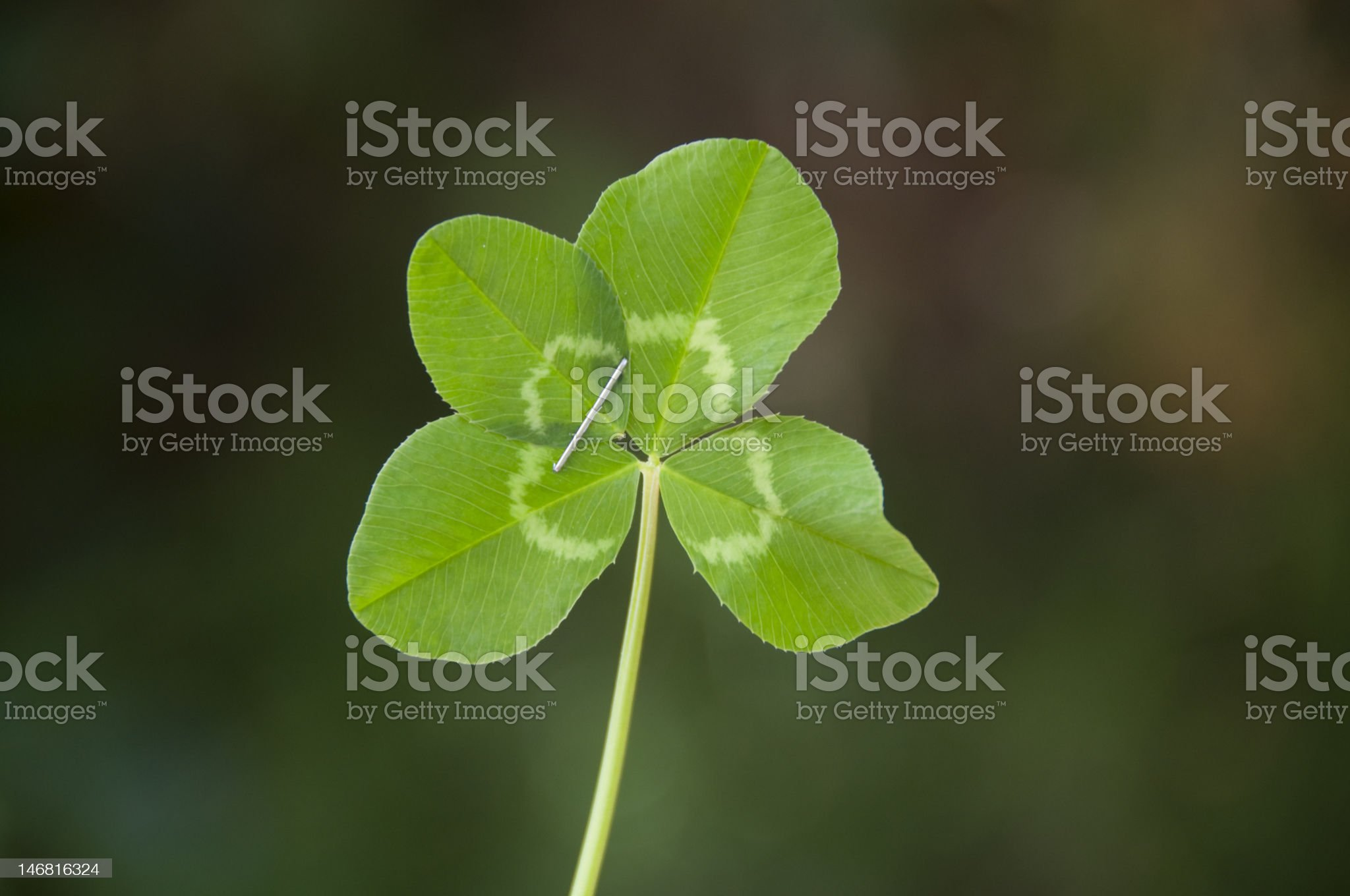 Make your own luck! royalty-free stock photo