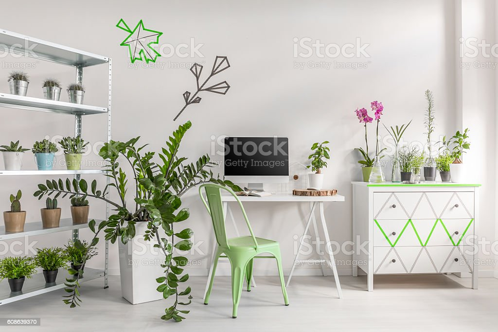 Make your room look like a garden stock photo