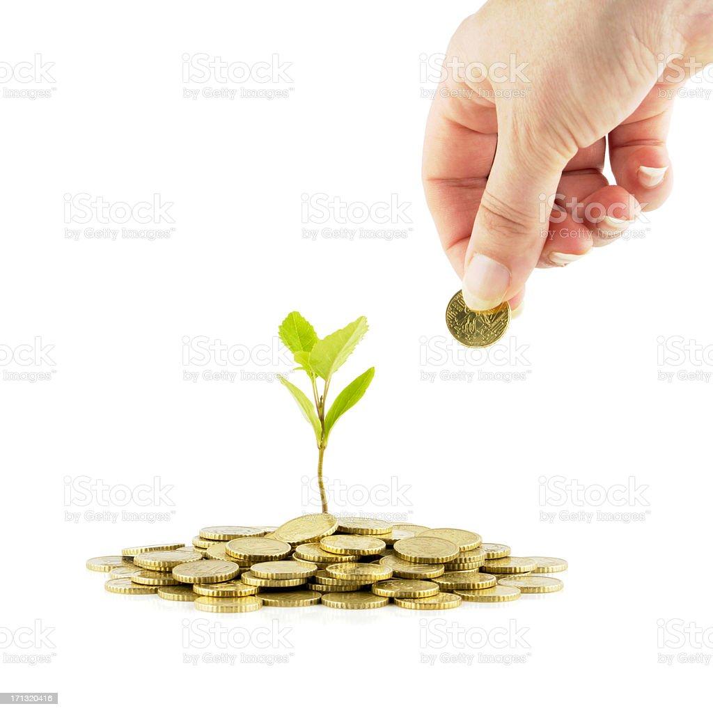Make your savings grow stock photo