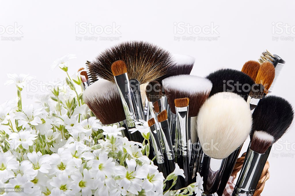 Makeup brushes set with flowers. Chickweed. White background stock photo