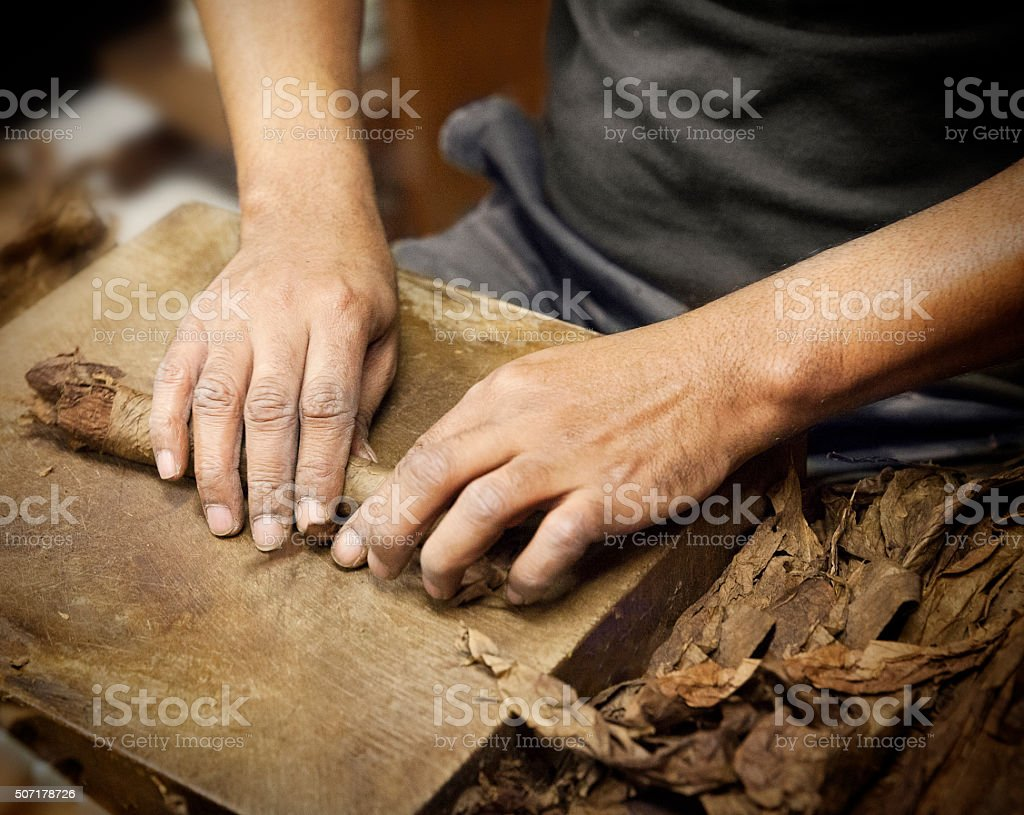 Making a cigar stock photo