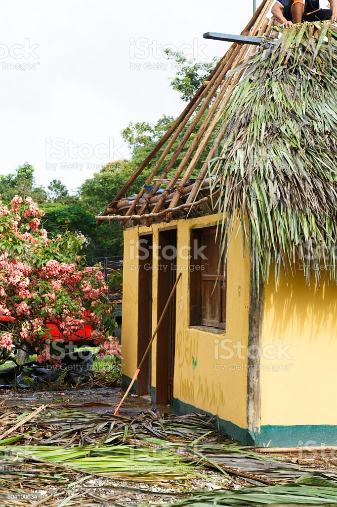Making a hut roof with palm leaves. Indigenous culture, Venezuela stock photo