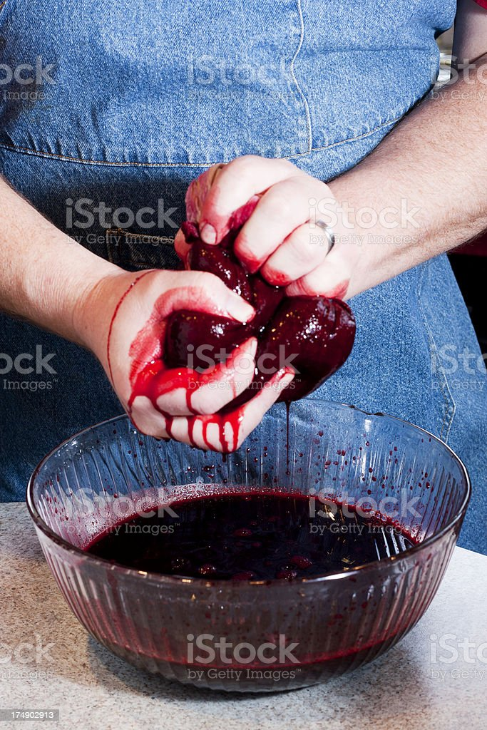 Making Blackberry Jelly or Syrup - Squeezing out the Juice royalty-free stock photo