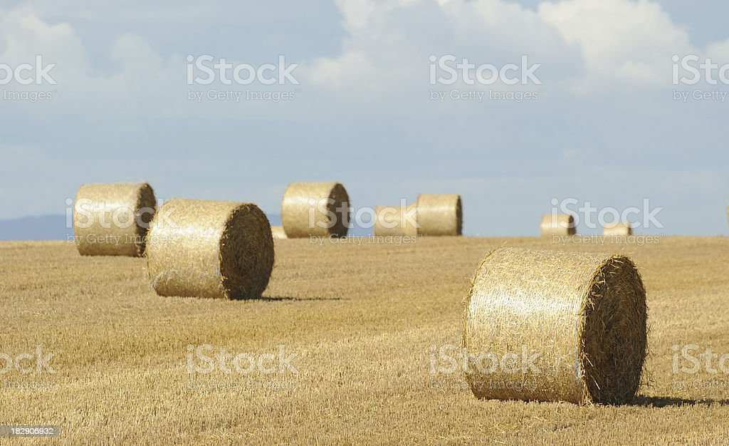 Making Hay in Gloucestershire royalty-free stock photo