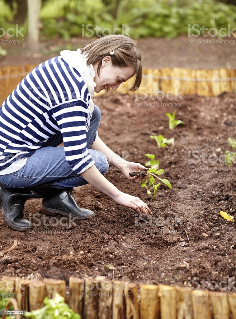 Making sure the soil is just right royalty-free stock photo
