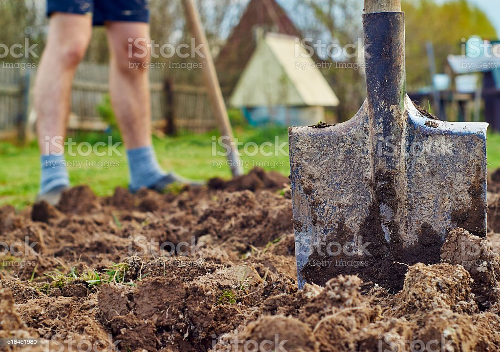 Making the garden-beds stock photo