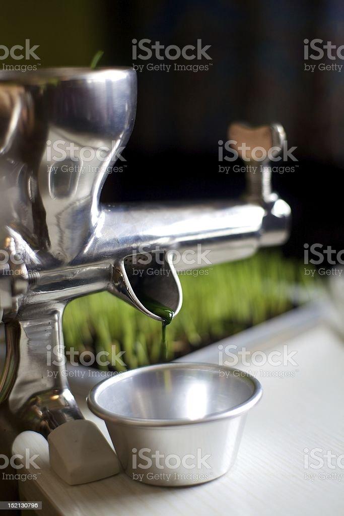 making wheatgrass juice stock photo