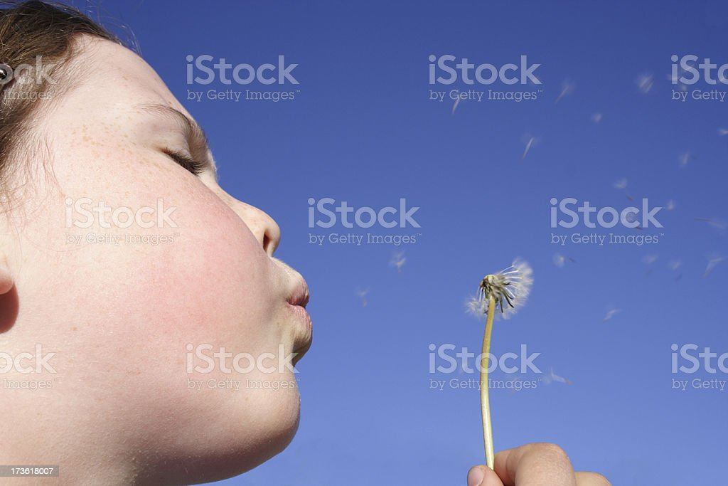 making wishes royalty-free stock photo