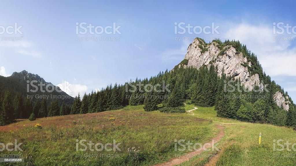 Mala Fatra National Park, Slovakia stock photo