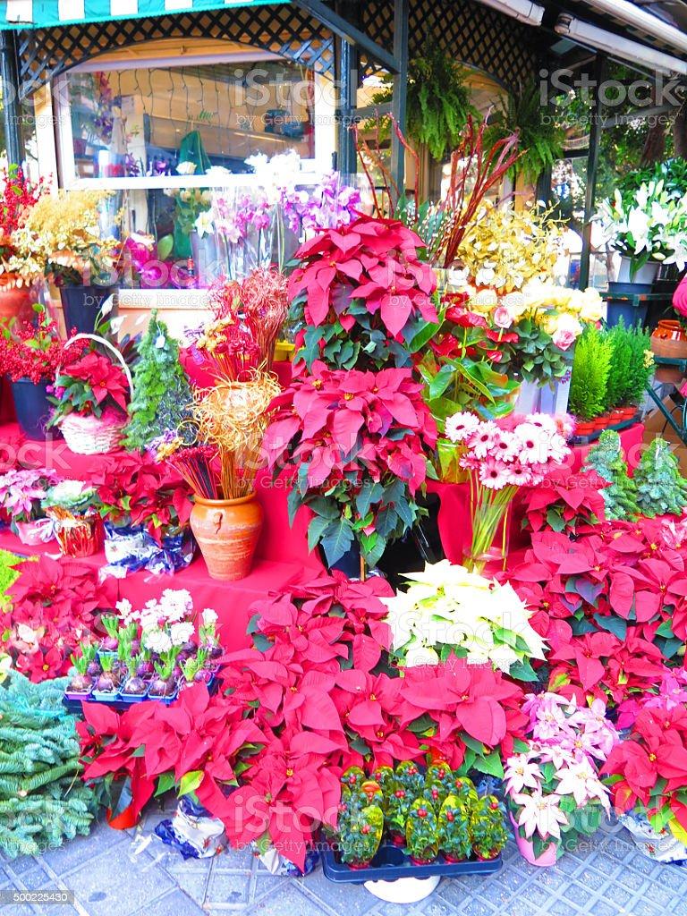 Malaga Flower Market stock photo