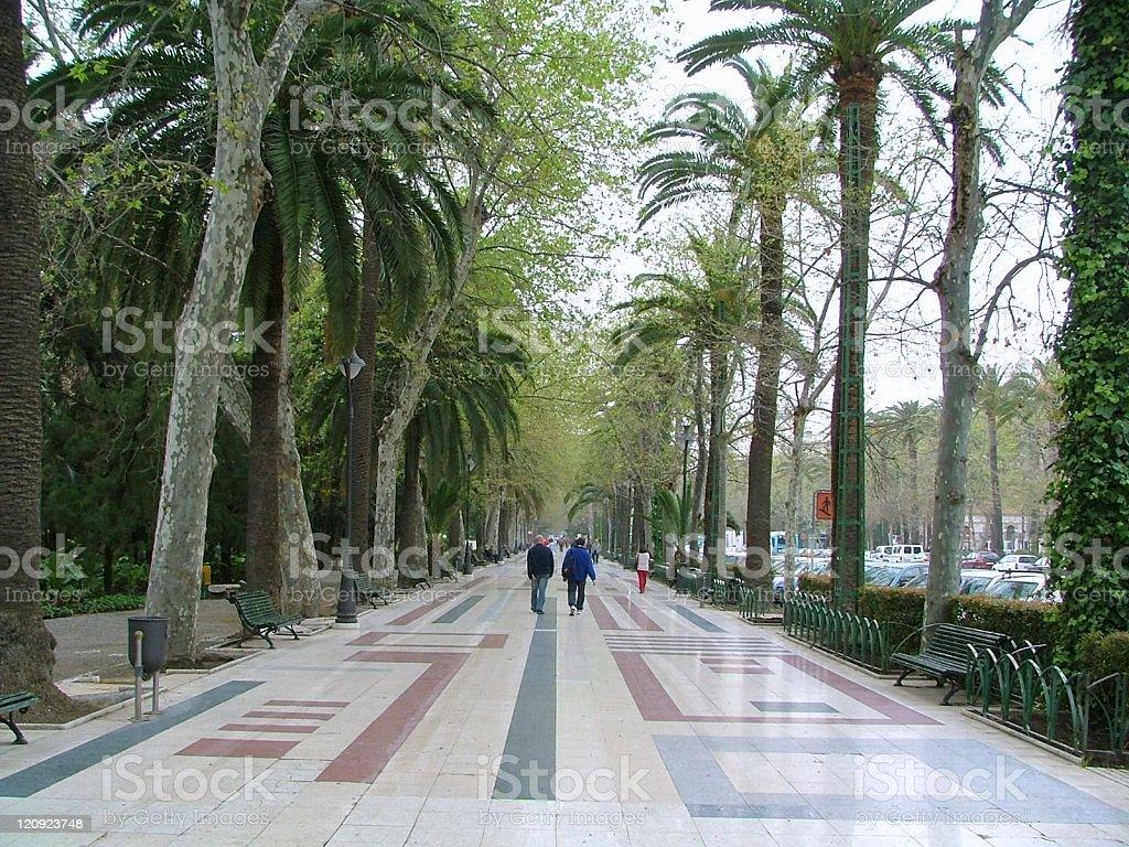 Malaga Promenade stock photo