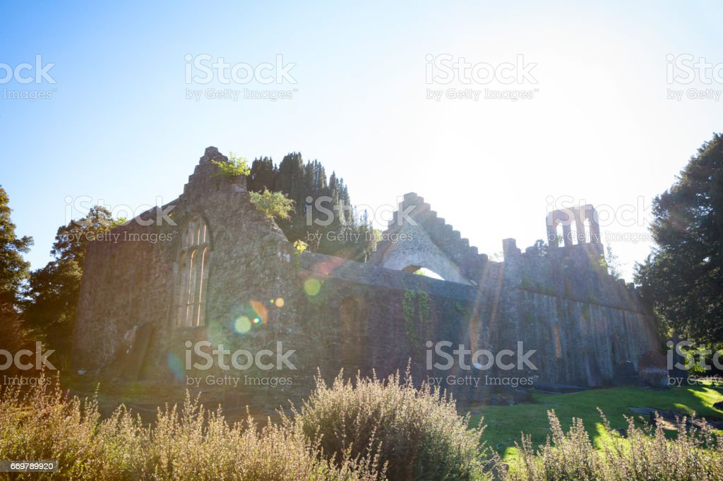 Malahide Abbey in Malahide, Fingal County, Ireland stock photo