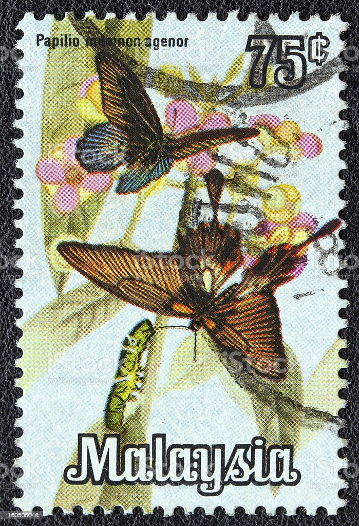 Malaysian stamp shows Papilio memnon agenor butterflies (1970)(1979) royalty-free stock photo